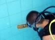 Galeria201307czyszczenie basenu22